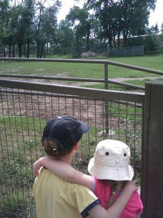 Kids-and-zebras-back